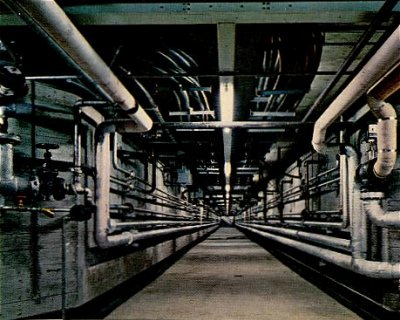 Service tunnel underneath the plant